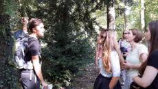 Tijdens een wildplukwandeling in het Weizigt krijgen deelnemers een goede indruk van wat er aan eetbare vruchten in de natuur te vinden is.