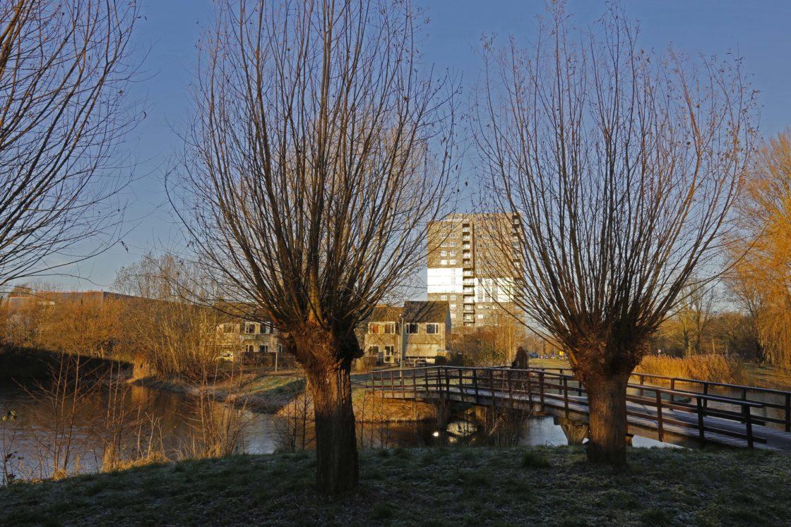 Auto Lease Deals >> Winterplaatjes - DordtCentraal   Gratis huis-aan-huis-krant voor Dordrecht, Zwijndrecht en ...